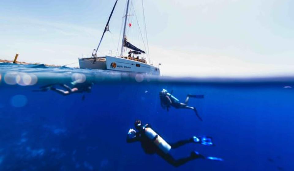Sail & Dive
