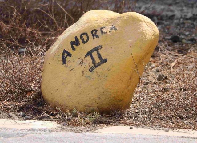 22. Andrea II