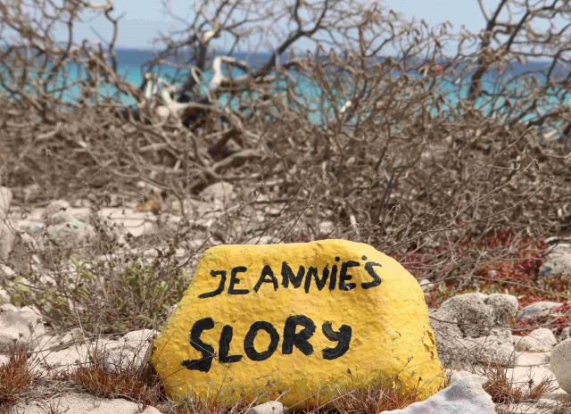 Jeannie's Glory