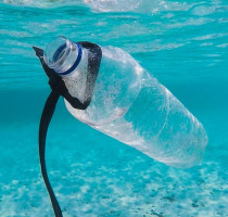 4 TIPS TO REDUCE PLASTIC USAGE ON BONAIRE