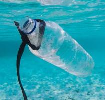 4 TIPS VOOR HET VERMINDEREN VAN PLASTIC-GEBRUIK OP BONAIRE