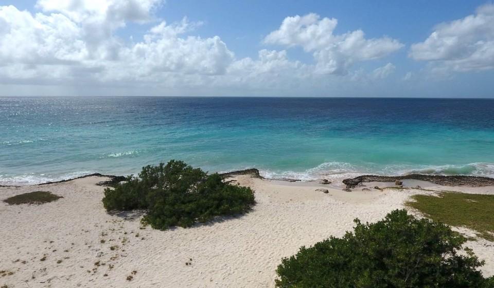 Bonaire duikspot 6: Vista Blue