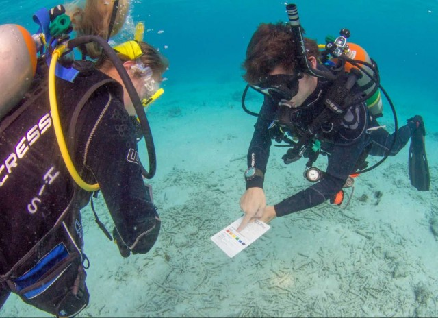 PADI Advanced Open Water Cursus