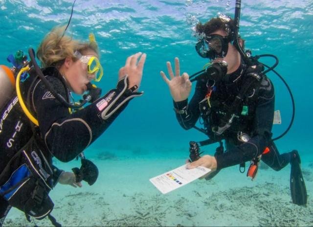 Cursus duiken